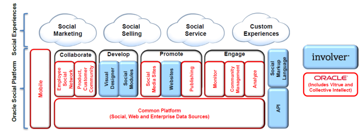 oracle social strategy
